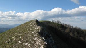 Cresta del Monte Cardamagna